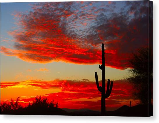 Colorful Arizona Sunset Canvas Print