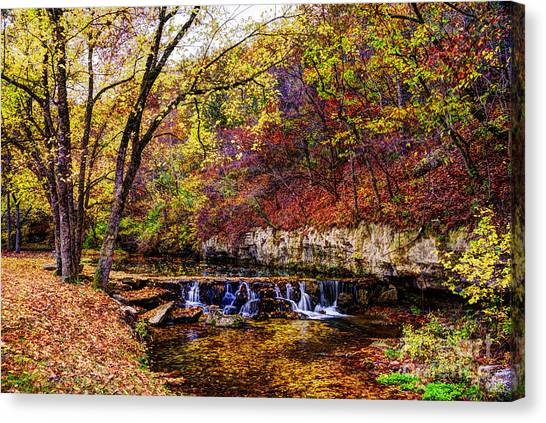 Colorful Autumn Stream In Dogwood Canyon Canvas Print