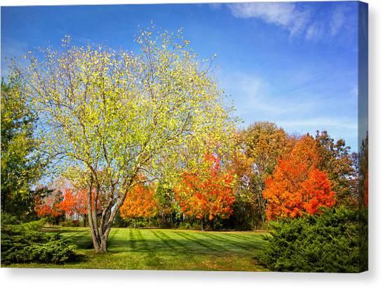Colorful Backyard Scene Canvas Print