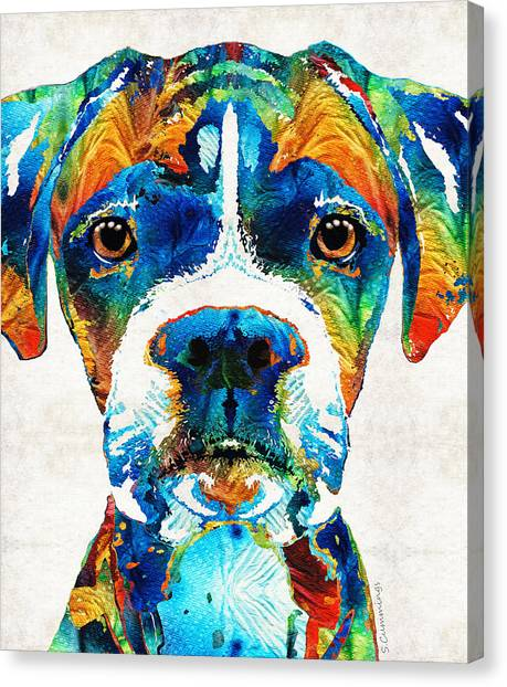 Boxers Canvas Print - Colorful Boxer Dog Art By Sharon Cummings  by Sharon Cummings