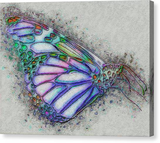 Analog Canvas Print - Colorful Butterfly by Jack Zulli