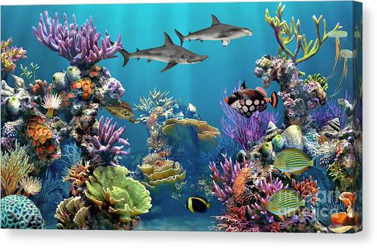 Colorful Coral Reef Canvas Print