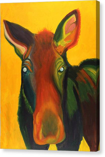 Colorful Cow Canvas Print by Amy Reisland-Speer