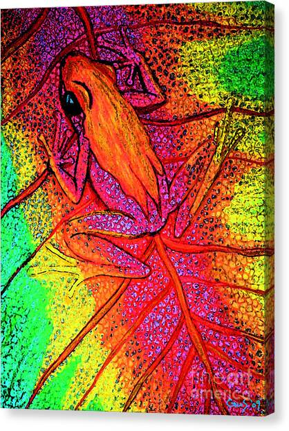 Colorful Frog On Leaf Canvas Print by Nick Gustafson
