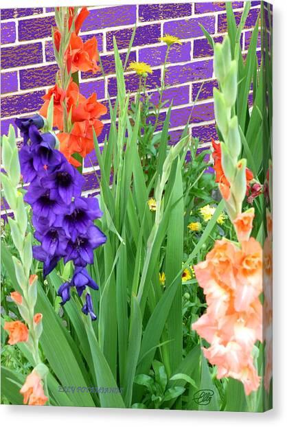 Colorful Gladiolas Canvas Print