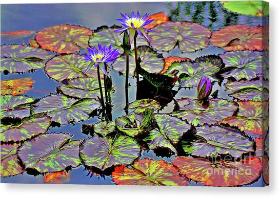 Canvas Print featuring the photograph Colorful Lily Pads by Patti Whitten