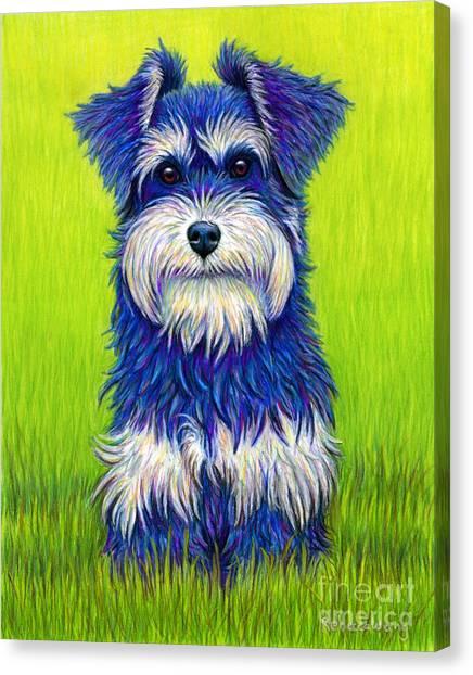 Colorful Miniature Schnauzer Dog Canvas Print