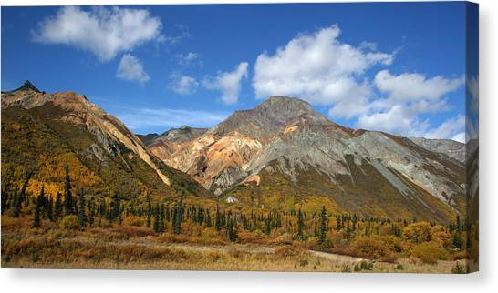 Colorful Mountains Canvas Print by Dave Clark
