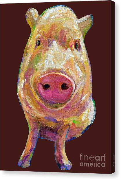 Colorful Pig Painting Canvas Print