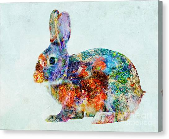 Colorful Rabbit Art Canvas Print