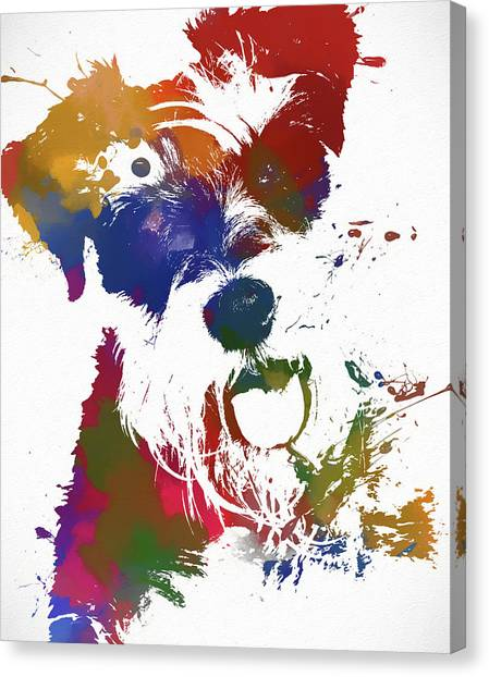 Schnauzers Canvas Print - Colorful Schnauzer by Dan Sproul