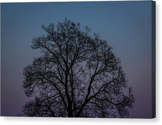 Colorful Subtle Silhouette Canvas Print