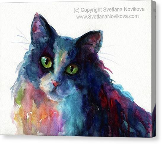Watercolor Canvas Print - Colorful Watercolor Cat By Svetlana by Svetlana Novikova