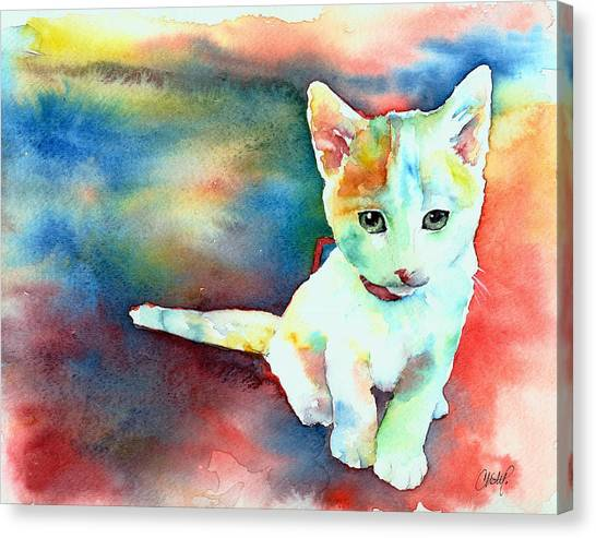 Colorfull Kitty Canvas Print
