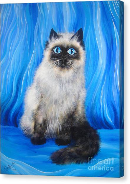 Himalayan Cats Canvas Print - Himalayan Cat With Blue Eyes by Sofia Metal Queen