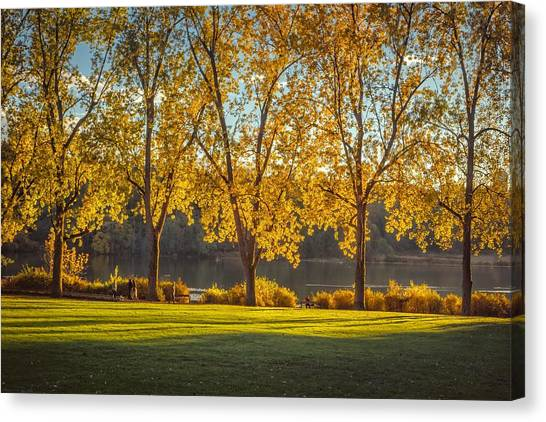 Colors Of Fall Canvas Print by Mauricio Ricaldi