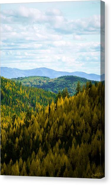 Colors Of Sherman's Pass Canvas Print