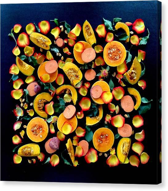 Colors Of Winter Squash Canvas Print