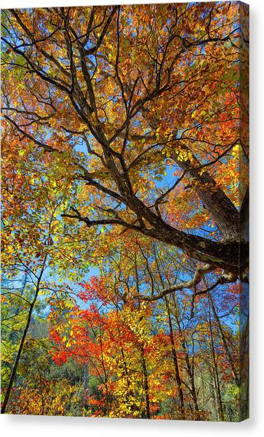 Colors On High Canvas Print