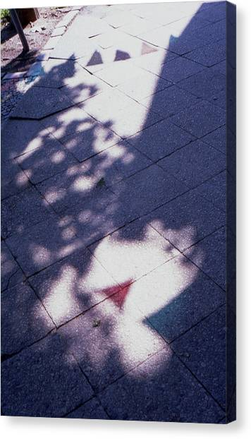 Colors On The Shadows Canvas Print