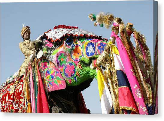Colourful Elephants At Elephant Festival Canvas Print by John Sones
