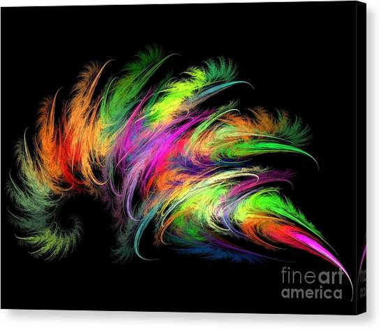 Colourful Feather Canvas Print
