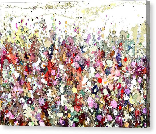 Colourful Meadow Iv Canvas Print