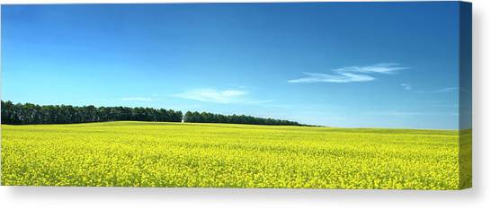 Colours Of Summer. Voznesenske, 2015. Canvas Print
