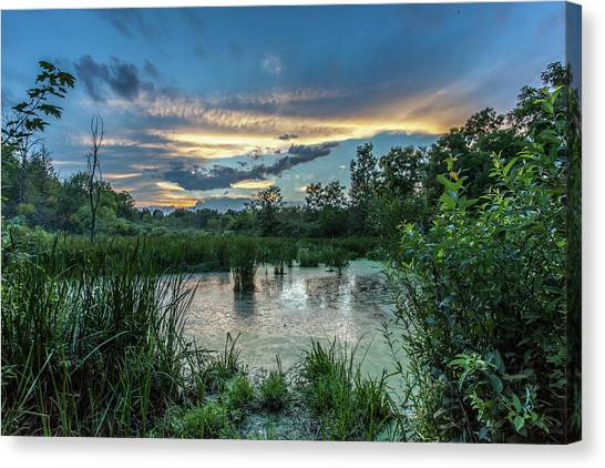 Columbia Marsh Sunset Canvas Print