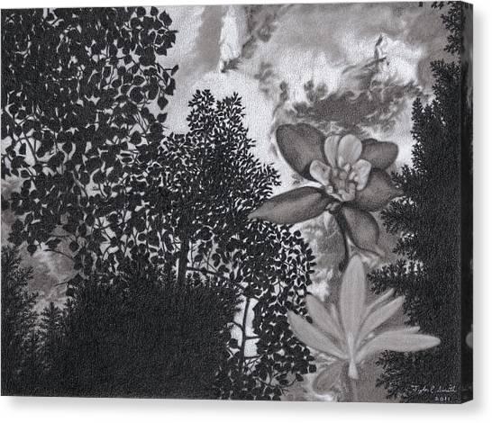 Columbine Sky Canvas Print by Tyler Smith