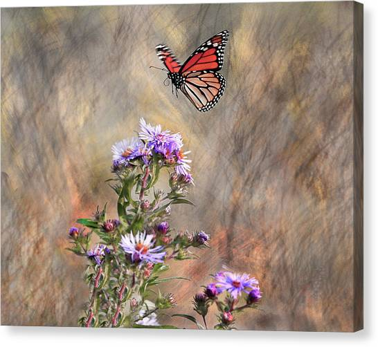 Comeing In For A Landing Canvas Print by James Steele