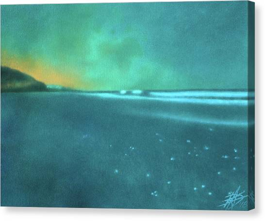 Luminescence At Torrey Pines Canvas Print by Robin Street-Morris