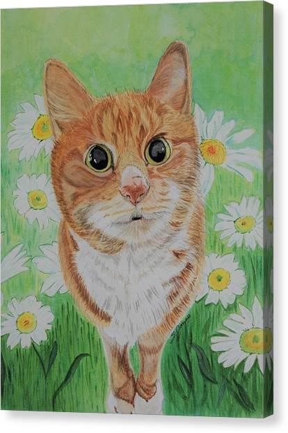 Coming Up Daisies Canvas Print
