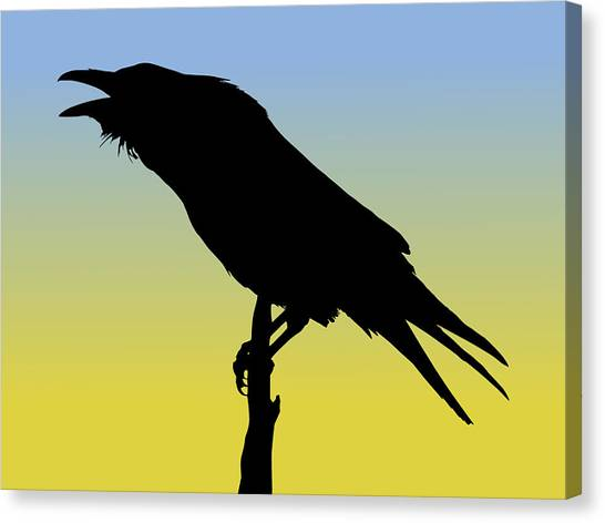 Common Raven Silhouette At Sunrise Canvas Print