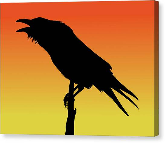 Common Raven Silhouette At Sunset Canvas Print