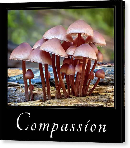 Compassion Canvas Print