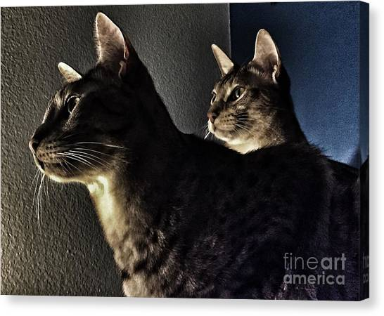 Ocicats Canvas Print - Companions by Jenny Revitz Soper