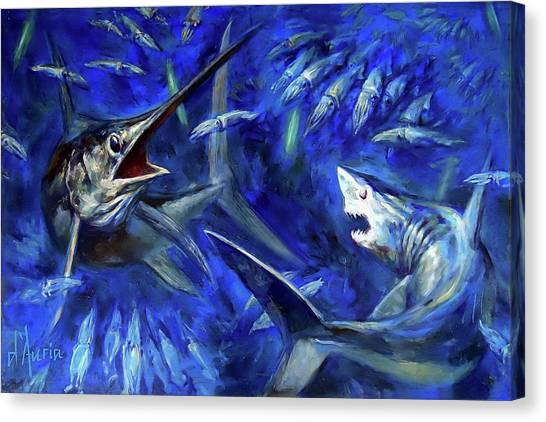 Swordfish Canvas Print - Competition by Tom Dauria