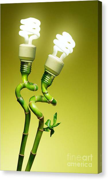 Conceptual Lamps Canvas Print