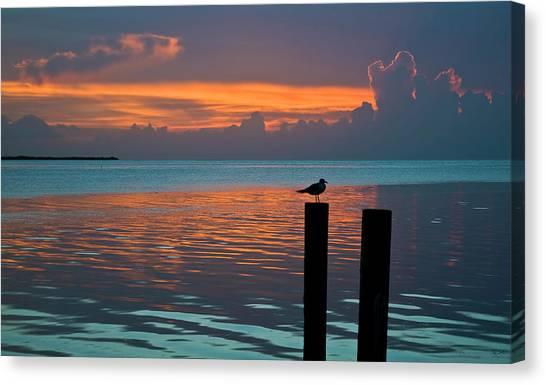 Conch Key Sunset Bird On Piling Canvas Print