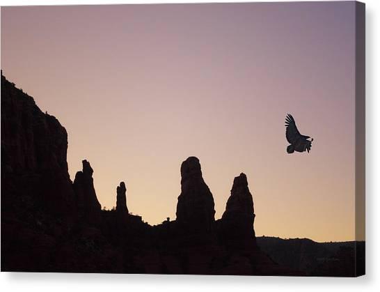 Condors Canvas Print - Condor Flight At Twilight by David Gordon
