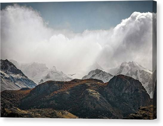 Condors Canvas Print - A Condor View by Ryan Weddle