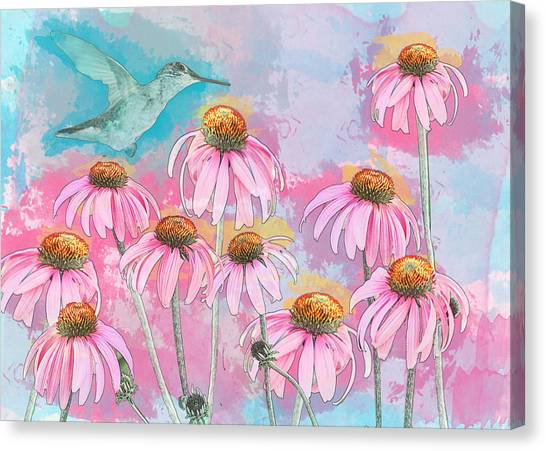 Coneflower Hummingbird Watercolor Canvas Print