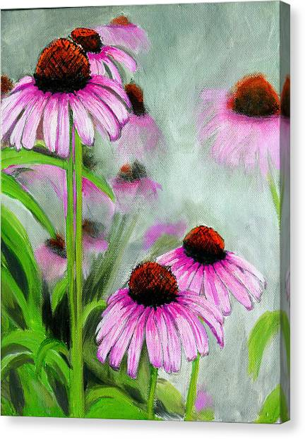 Coneflowers In The Mist Canvas Print
