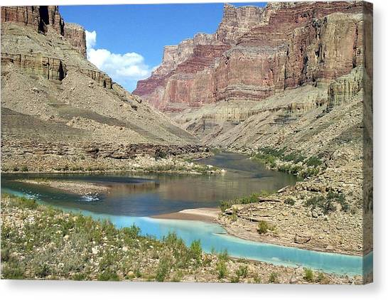 Confluence Of Colorado And Little Colorado Rivers Grand Canyon National Park Canvas Print