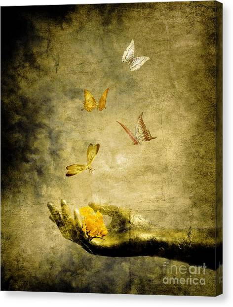 Yellow Butterfly Canvas Print - Connect by Jacky Gerritsen