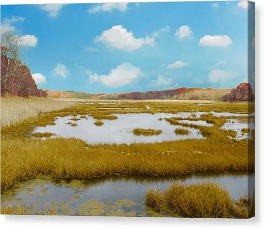 Connecticut Salt Water Marsh Canvas Print