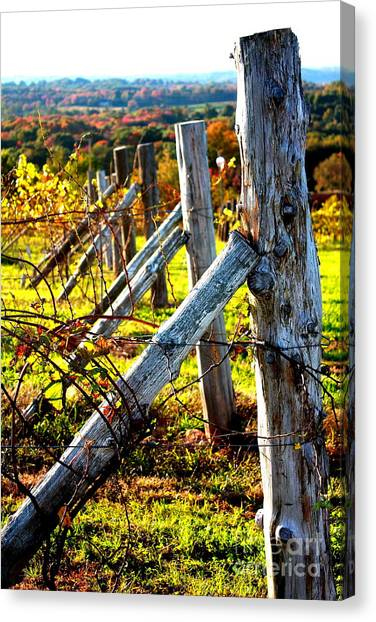 Connecticut Winery In Autumn Canvas Print