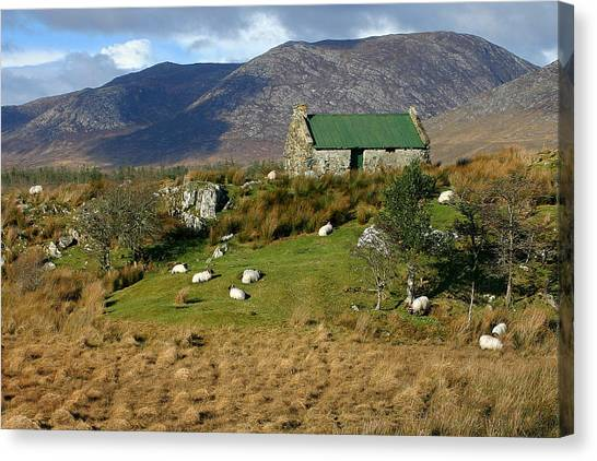 Connemara Cottage Ireland Canvas Print