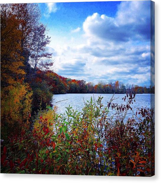 Conservation Park And Pine River In The Fall Canvas Print